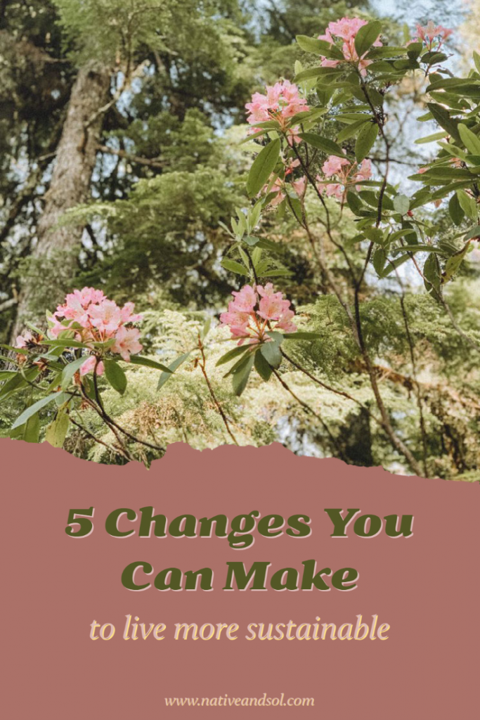 5 Changes You Can Make to Live More Sustainable